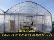 Теплица,  цветы город Штефан Водэ